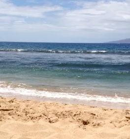 Maui wave video
