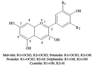 Anthocyanins (3) 2